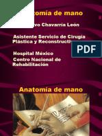 Anatomía y Cirugía de Mano