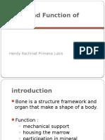 Form n Function of Bone Hendy