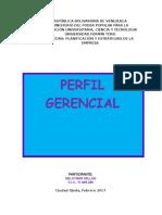 Nelsymar Millan Perfil Gerencial.docx