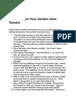How to Grow Your Garden Gem Tomato