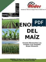 Fenologia Del Maiz