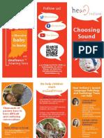 hearindiana-opinionleaders-brochure-final