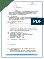 Informe Técnico Caminos 2