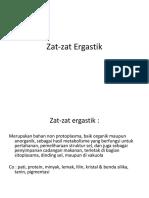 Zat Zat Ergastik