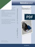 algebra1-sesta-edizione-copertina-fronte-retro.pdf