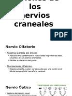 Lesiones de Los Nervios Craneales