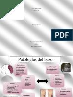 patologias del bazo