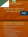 11. Benih Bcmp Dan 2 Tingkat Daun
