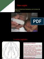 ECO - TRANS 02.pdf