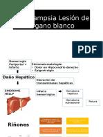 Preeclampsia Lesión de órgano blanco.pptx