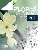 Flores Daca at Inga