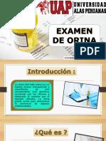 Expo Examen de Orina
