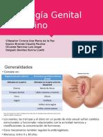 Histología Genital Femenino.pptx