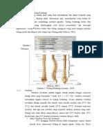 Anatomi Fisiologis Tulang Belakang