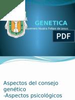 Aspecto Psicologicos Del Consejo Genetico
