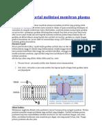 Gerakan Material Melintasi Membran Plasma