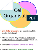 1_Cell_Organization (1).ppt