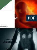 Embriologi kedokteran (2)