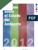 InformeSAyDS2012.pdf