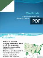 06-wetlands estuaries saltwater intrusion  1