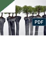 portafolio gomez barroz.pdf