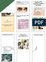 4 Leaflet Katarak