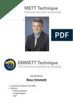 Emmett Prezentare