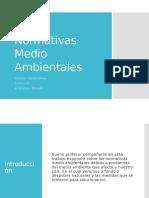 Normativas Medio Ambientales (Analia Del Pilar Astroza Loaiza)