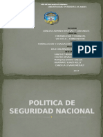 Politica de Seguridad Nacional
