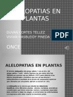 Presentacion PowerPoint Alelopatias