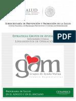 LineamientosGAM_2016.pdf