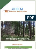 001 EXPLICACIÓN MODELACIÓN PL .pdf