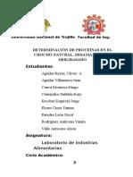 Determinación de Proteínas en El Chocho Natural (3) (1)