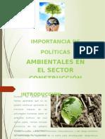Importancia de Políticas Ambientales en El Sector Construcción II