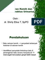 290740075-Batu-Sal-Kemih-BLOK-20.ppt