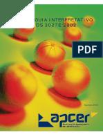 Guia Interpretativo APCER_DS_3027E_2002 (Agosto 2005).pdf
