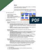 energia-de-la-biomasa.pdf