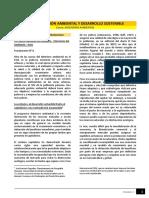 Lectura - Contaminación Ambiental y Desarrollo Sostenible_INGAMM2