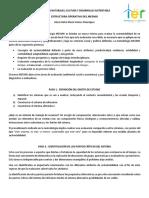 Estructura Operativa Del Mesmis