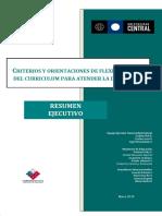 Criterios y orientaciones para la Flexibilización Curricular.[1].pdf