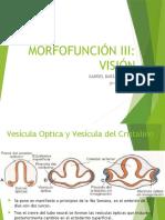 Embriologia de La Visión