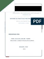 Informe de Practicas DIVINCRI