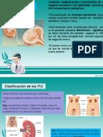 clasificación de las ITU