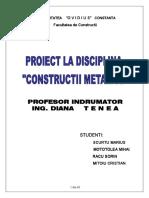 298510763-Proiect-Constructii-metalice.pdf