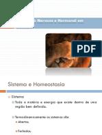 10biologiaegeologia 10ano Regulaonosseresvivos 101015140719 Phpapp01(1)