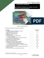 Auditoria Forense - Una Mision.pdf