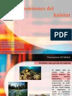 Dimensiones Del Habitat