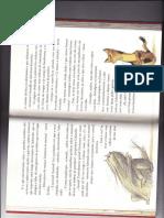 Parte 1 Capitulo 1 Pagina 22