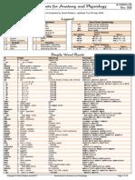 Anatomy roots.pdf