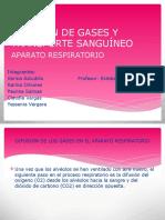 Difusión de Gases y Transporte Sanguíneo